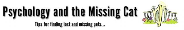 Petfinder For Lost Pet Cats