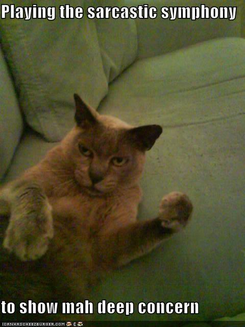 Cat Advantage: Expression Reading