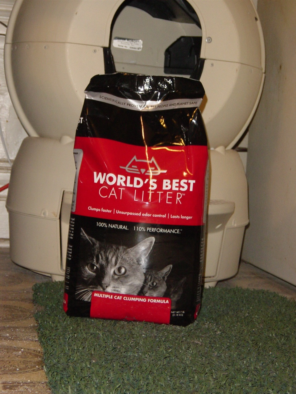 Best litter to use for multiple cats