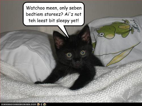 Funny Talking Cat Videos