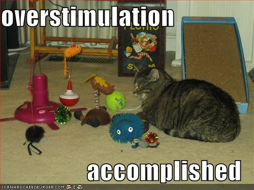 overstimulation-accomplished.jpg