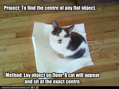Find the centre of any flat object method lay object on floor a cat