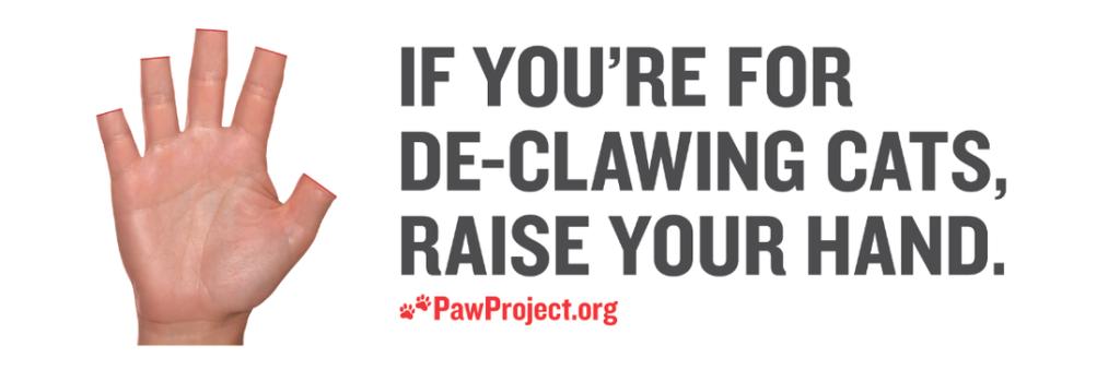 Can I Declaw My Dog