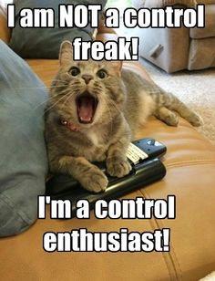 Freak Cat Meme