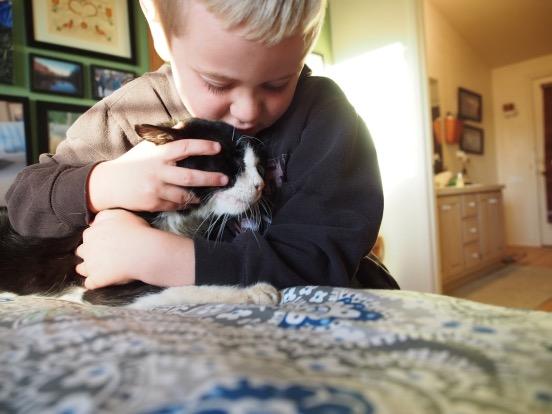 Adopting Senior Shelter Dog Okay To Change Name