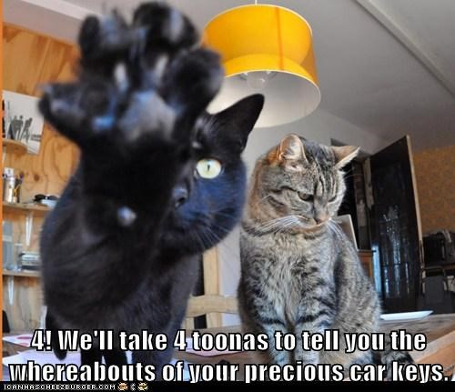 4! We'll take 4 toonas to tell you the whereabouts of your precious car keys. (black cat extends paw with four toes while a tabby cat looks down)
