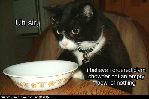 Cats Like Canned Makaeral