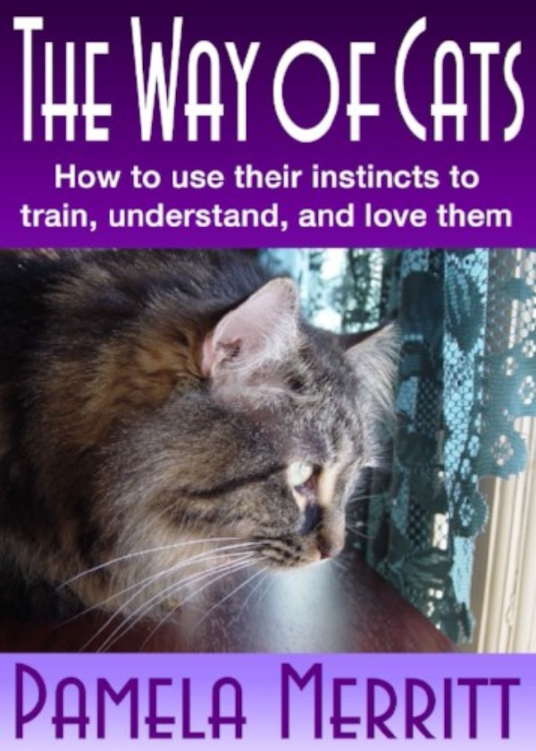Out Of Ten Cats Reverand